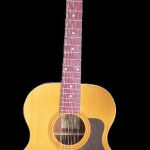 12-и струнные гитары